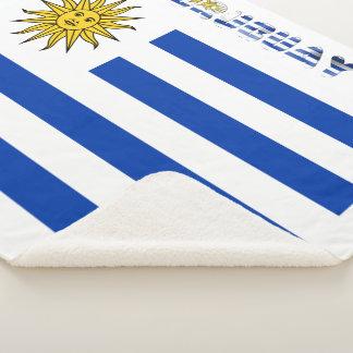 Uruguayan flag sherpa blanket