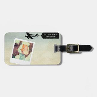 US Air Mail Goose Tan Hued Luggage Tag