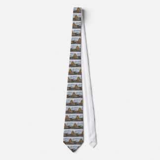 US Capitol Building at Dusk Tie