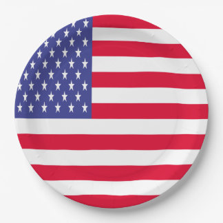 US Flag 9 Inch Paper Plate