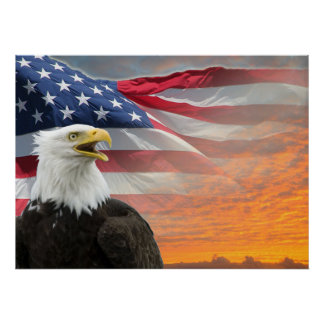 US Flag Eagle Poster