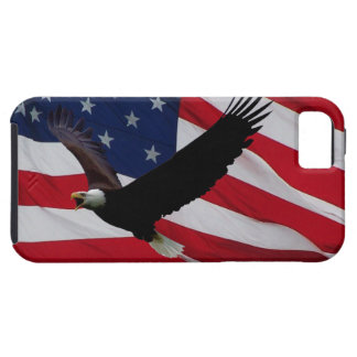 US Flag on Windy Day iPhone 5 Cases