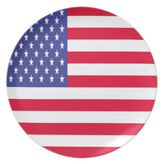 US Flag Party Plate