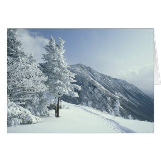 US, NH, Snow covered trees Trails Snoeshoe Card