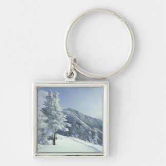 US, NH, Snow covered trees Trails Snoeshoe Silver-Colored Square Keychain