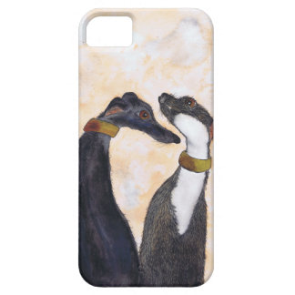 US TWO iPhone 5 COVERS
