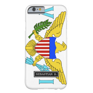 US Virgin Islands flag Barely There iPhone 6 Case