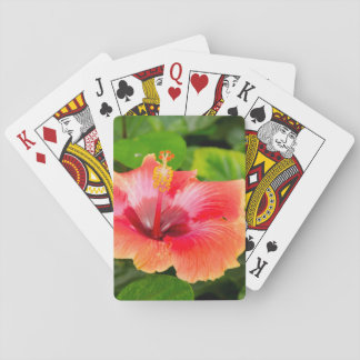 USA, Alabama, Theodore Near Mobile 4 Poker Deck