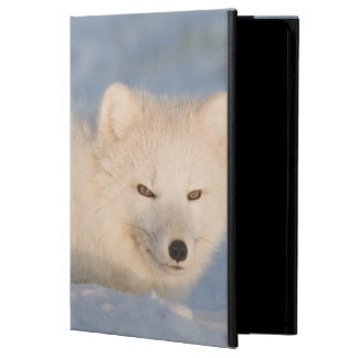 USA, Alaska, 1002 Coastal Plain of the ANWR. An Case For iPad Air