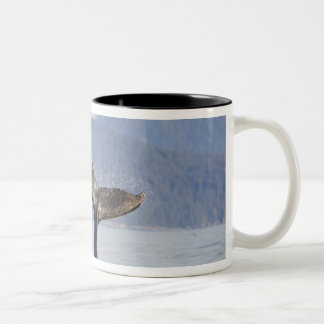 USA, Alaska, Icy Strait. Humpback Whale calf Coffee Mugs