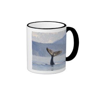 USA, Alaska, Icy Strait. Humpback Whale calf Mugs