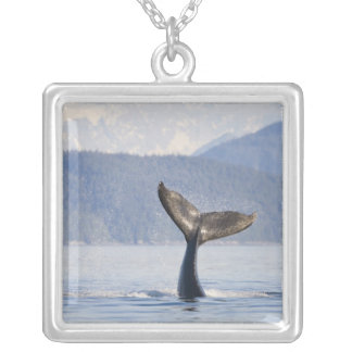 USA, Alaska, Icy Strait. Humpback Whale calf Square Pendant Necklace