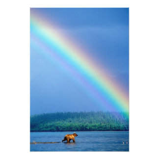 USA, Alaska, Katmai National Park, Grizzly 2 Photographic Print