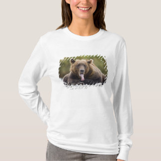 USA, Alaska, Katmai National Park, Kukak Bay, T-Shirt