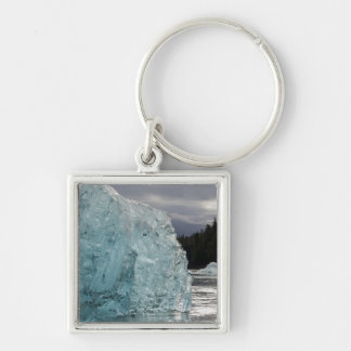 USA, Alaska, Tongass National Forest, Tracy 2 Silver-Colored Square Keychain
