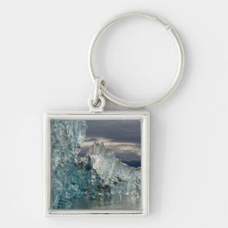 USA, Alaska, Tongass National Forest, Tracy 3 Silver-Colored Square Keychain