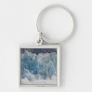 USA, Alaska, Tongass National Forest, Tracy Silver-Colored Square Keychain