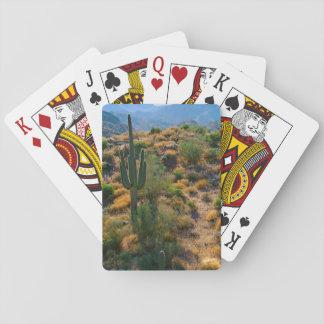 USA, Arizona. Desert View Playing Cards