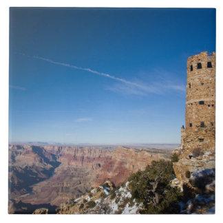 USA, Arizona, Grand Canyon National Park. Desert Tile