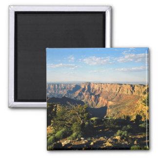 USA, Arizona, Grand Canyon National Park, View Square Magnet