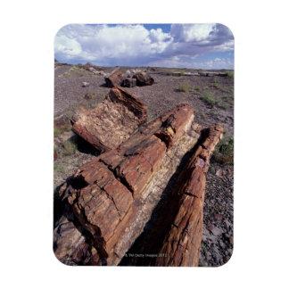 USA, Arizona, Petrified Forest National Park, 2 Magnet