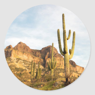 USA, Arizona, Tonto National Forest, Picketpost 2 Classic Round Sticker