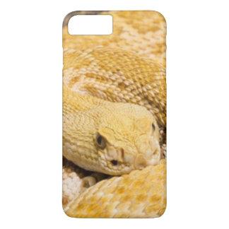 USA, Arizona, Tucson, Arizona-Sonora Desert 2 iPhone 7 Plus Case