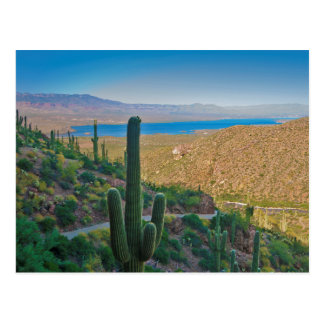 USA, Arizona. View From The Entrance To Tonto Postcard
