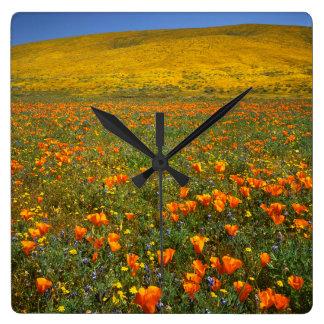 USA, California, Antelope Valley California Square Wall Clock