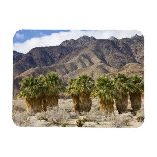 USA, California, Anza-Borrego Desert State Park. Magnet