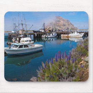 USA, California. Docked Boats At Morro Bay Mouse Pad