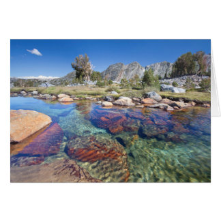 USA, California, Inyo National Forest 4 Card