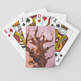 USA, California, Inyo National Forest 9 Playing Cards