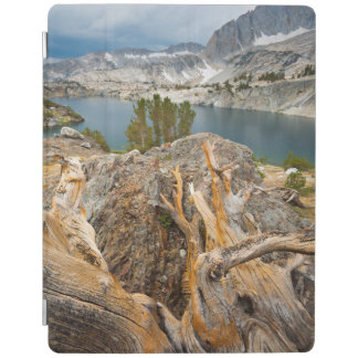 USA, California, Inyo National Forest. iPad Cover