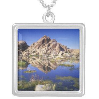 USA, California, Joshua Tree National Park, Silver Plated Necklace