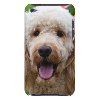 USA, California. Labradoodle Looking At You Barely There iPod Case