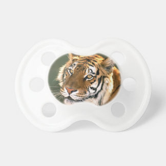 USA, California, Los Angeles County. Portrait 5 Baby Pacifiers
