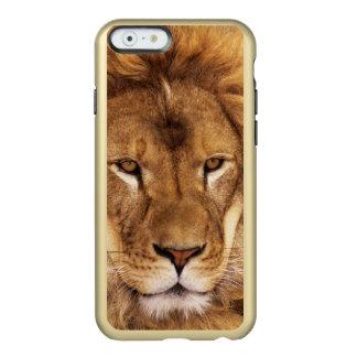 USA, California, Los Angeles County. Portrait Incipio Feather® Shine iPhone 6 Case