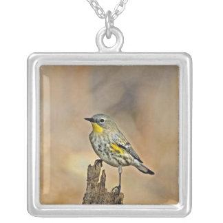 USA, California, Los Angeles, Santa Monica Silver Plated Necklace