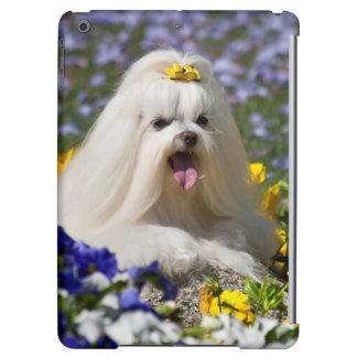 USA, California. Maltese Lying In Flowers iPad Air Case
