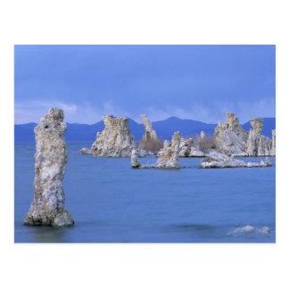 USA, California, Mono Lake Postcard