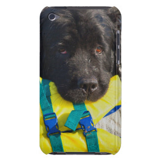 USA, California. Newfoundland With Life Vest iPod Touch Cover