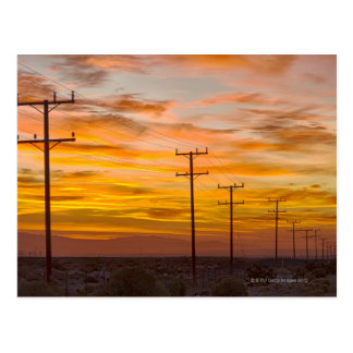 USA, California, Palm Springs, power line at 2 Postcard