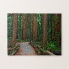 USA, California. Path Among Redwoods In Muir Jigsaw Puzzle