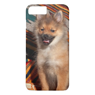USA, California. Pomeranian Sitting iPhone 7 Plus Case