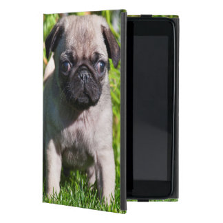 USA, California. Pug Puppy Standing In Grass Covers For iPad Mini