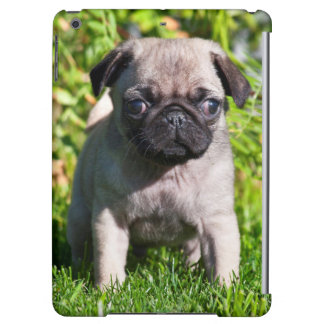 USA, California. Pug Puppy Standing In Grass iPad Air Covers