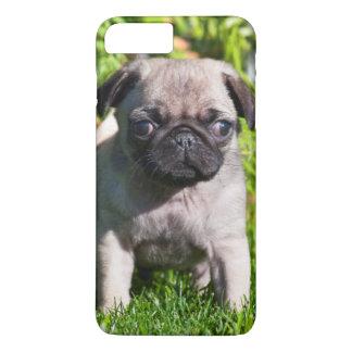 USA, California. Pug Puppy Standing In Grass iPhone 7 Plus Case