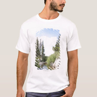 USA, California, Sonora Pass, Landscape with T-Shirt