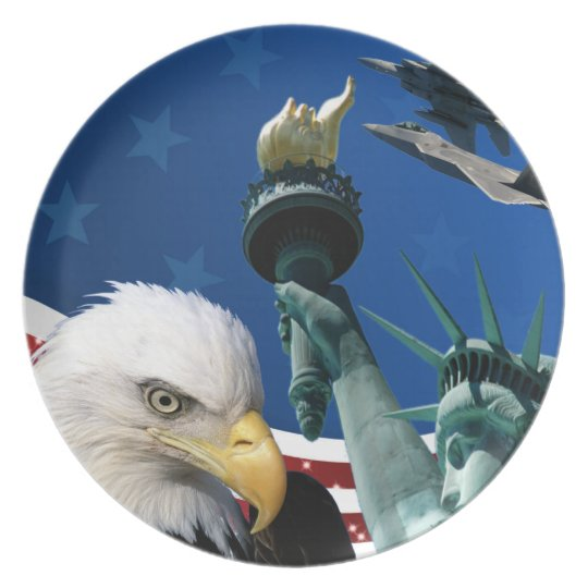 USA COLLAGE PLATE
